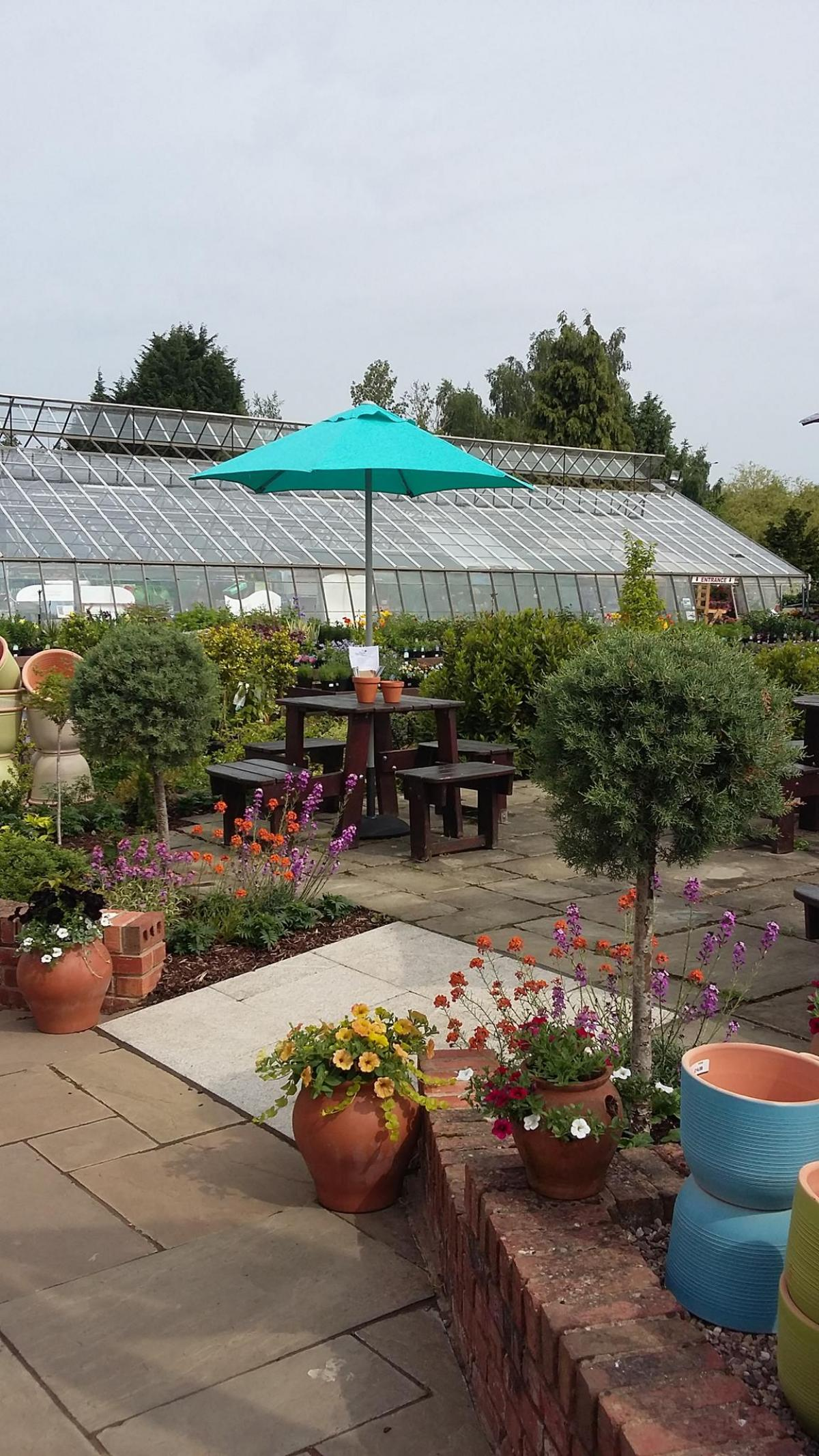 Images from Mrs Bee's Potting Shed Café