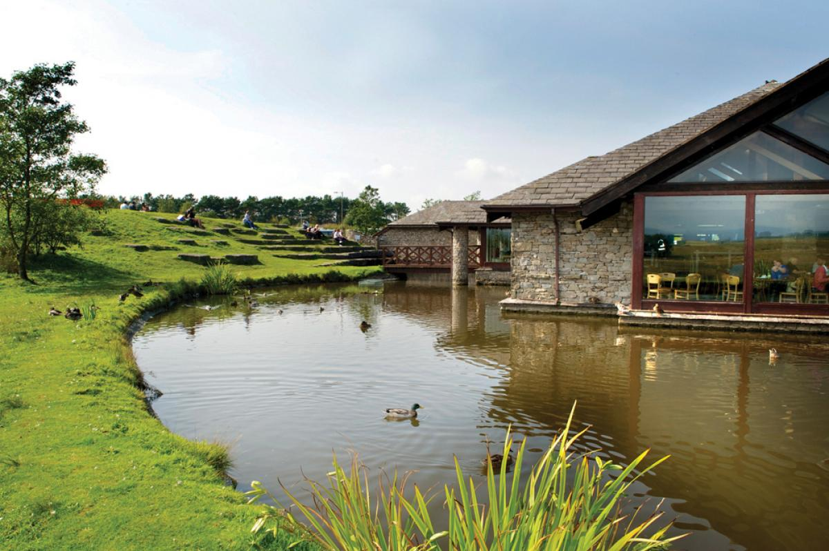 Images from Tebay Services