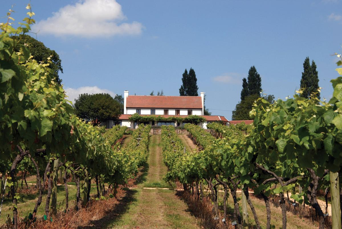 Images from Three Choirs Vineyard