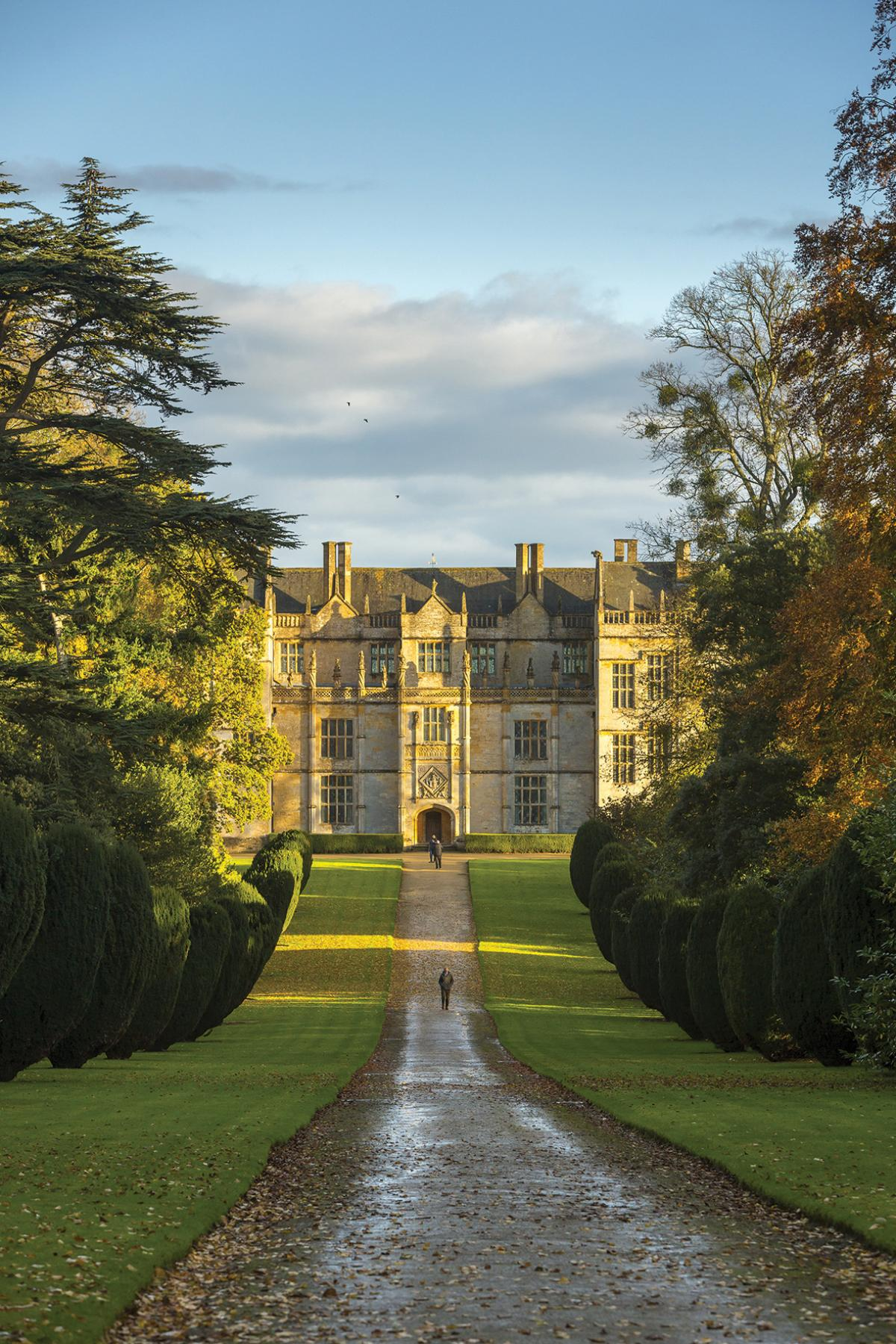 Images from Montacute House (NT)