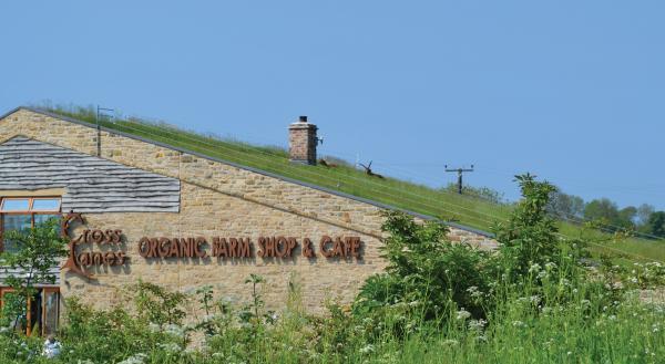 Image of Cross Lanes Organic Farm